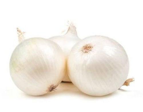 Buy Onion White Online