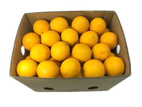 Buy Orange Valencia Box Online