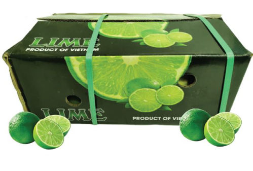 Buy Lime Box Online