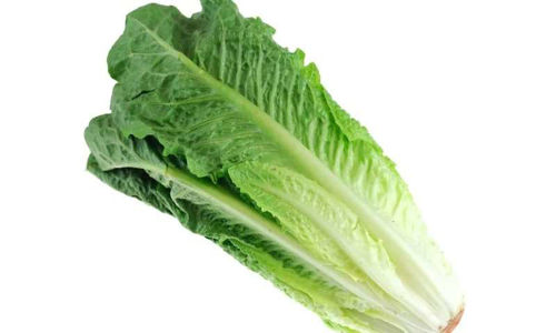 Buy Lettuce Romaine Online