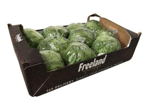 Buy Iceberg Box Online