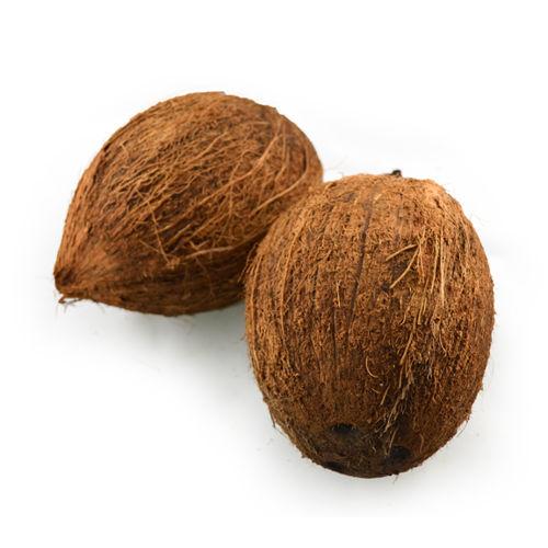Buy Coconut Dry Online