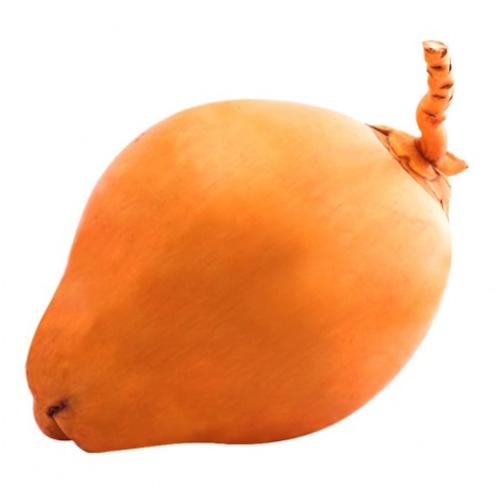 Buy King Coconut Online