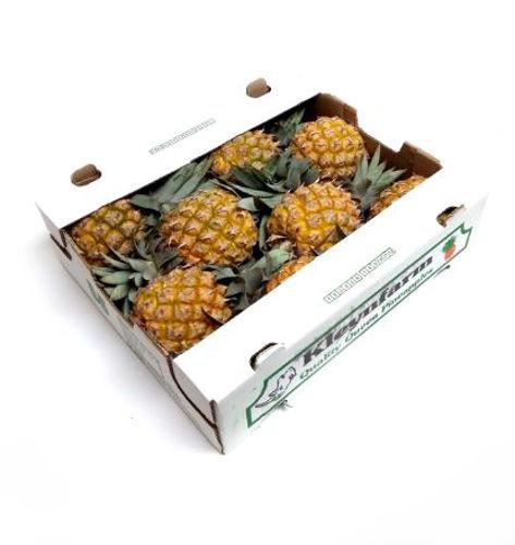Buy Baby Pineapple Box Online