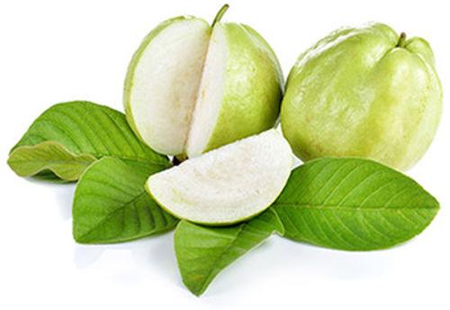 Buy Guava Online