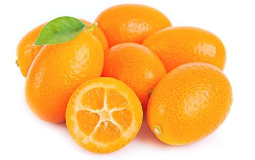 Buy Kumquat Online