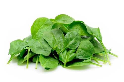 Buy Baby Spinach Online