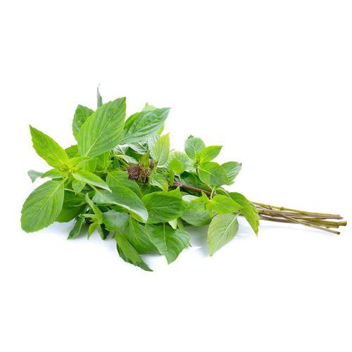 Buy Basil Leaves ????? Online