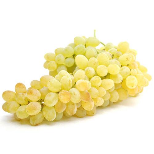 Buy Grapes White Seedless Online
