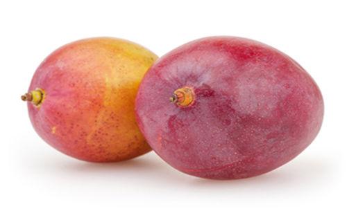 Buy Mango Naomi Online