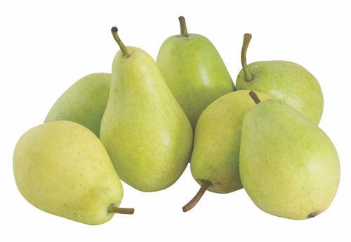 Buy Pears Coscia Online