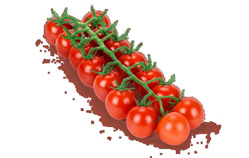 Buy Tomato Cherry Bunch Online