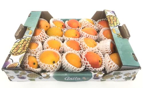 Buy Fresh Baby Mango Box Online