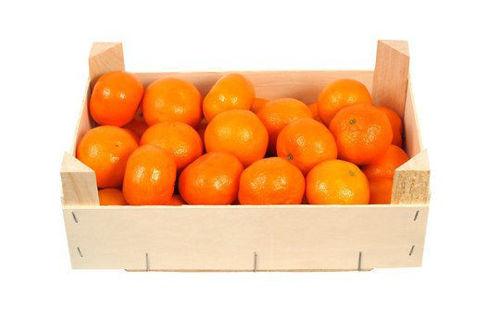 Buy Mandarin Nadorcott Box Online