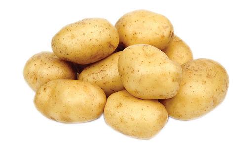 Picture of Potato