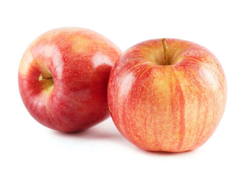Picture of Royal Gala Apple XF