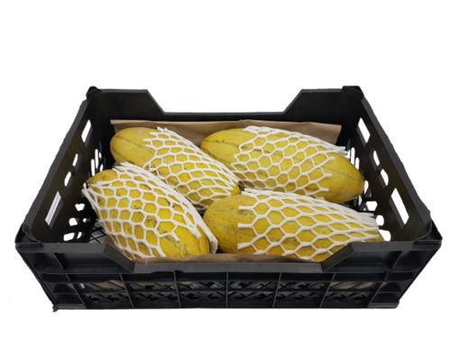 Buy Sweet Melon Mashadi Box Online
