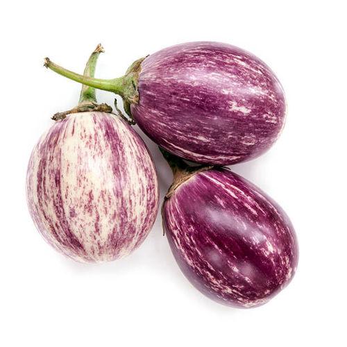 Buy Fresh Eggplant Purple Rain Online