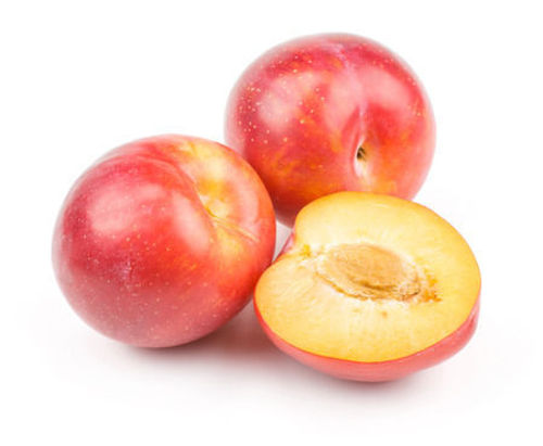 Buy Plums Red Online