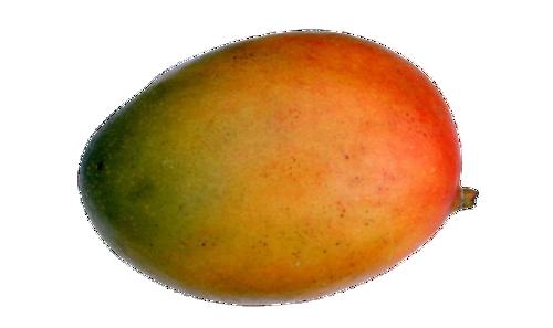 Buy Mango Apple Online