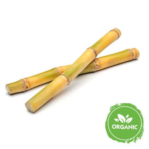 Buy Organic Sugarcane Online